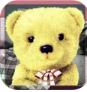 会说话的毛绒熊v1.2.8