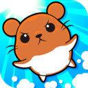 仓鼠竞赛v1.0.4