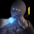 行走盗贼模拟器v1.0